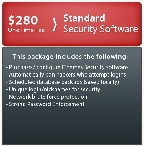 Website security packages